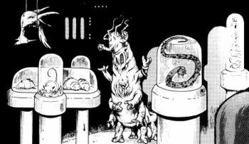 Sabador in seiner Tierhandlung