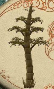 Ein Hsubeerenbaum