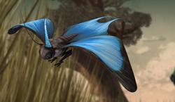 Ein Nachrichten-Schmetterling der Lurmen.