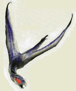 Ein ausgewachsenes Hawkbat